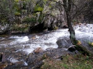 aguas arriba3 río jarama