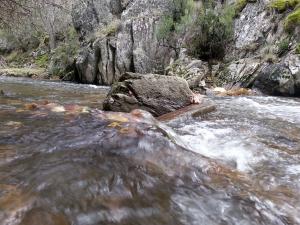 rápido2 río jarama