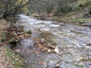 aguas abajo1 rio jarama