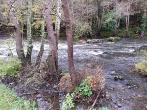 río Nora 4