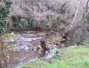 río Nora