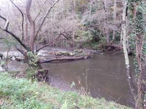 Aguas tranquilas sobre el río Nora