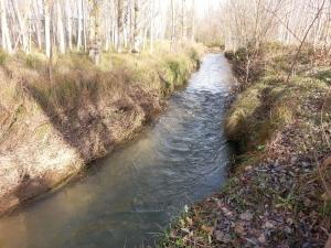 rio arandilla 1