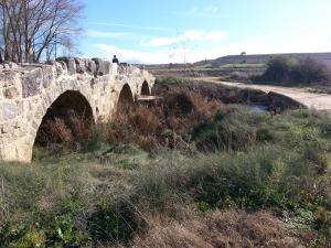 puente romano 1