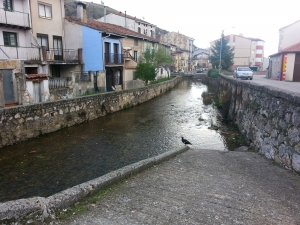 encauzamiento río Arandilla